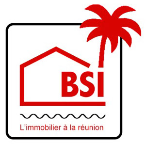 Agence immobilières BSI