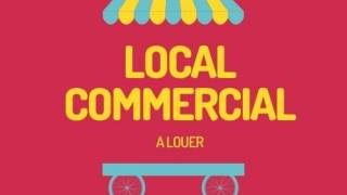 location local commercial à baie mahault (97122)