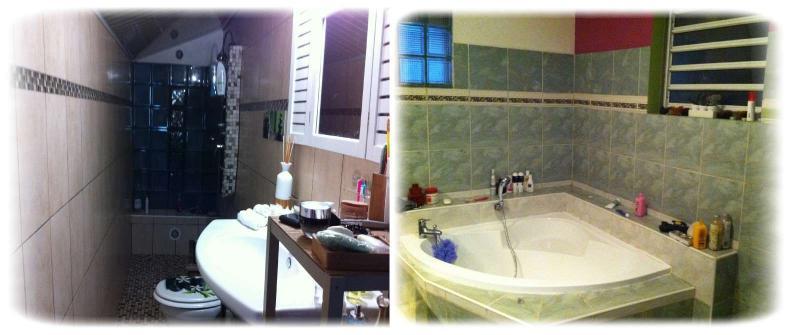 location maison la montagne 97417 r union nord r f 513fa. Black Bedroom Furniture Sets. Home Design Ideas