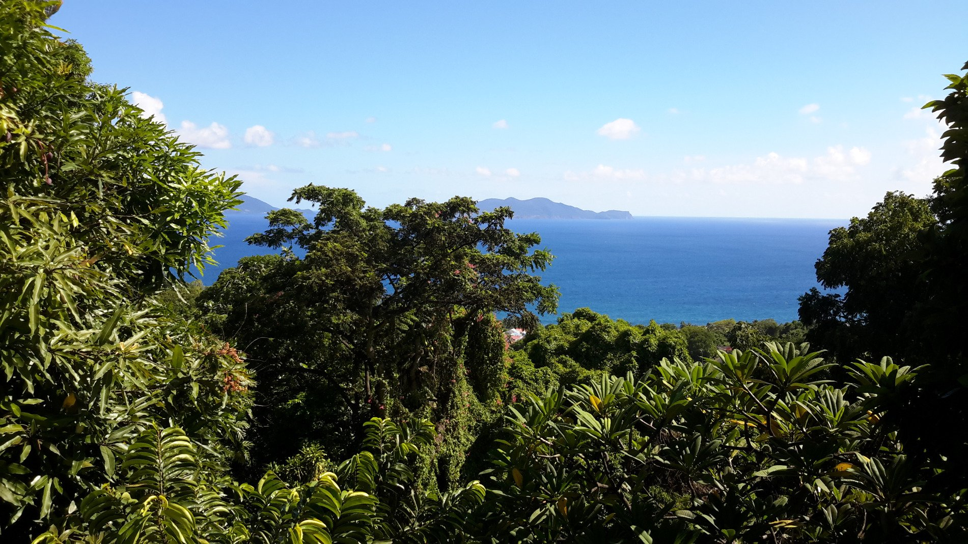 Achat maison trois rivi res 97114 guadeloupe basse terre sud r f 2006 - Maison a renover guadeloupe ...