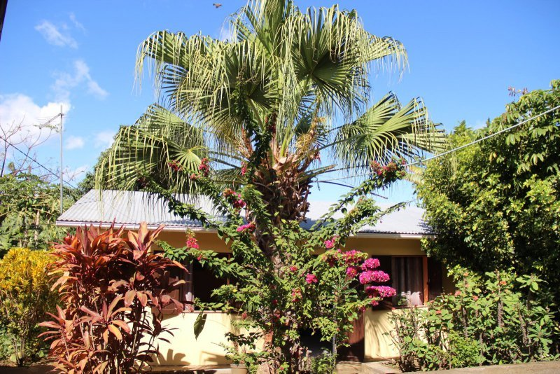 Achat maison rivi re saint louis 97421 r union sud r f for Beau jardin st louis