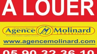 location local professionnel à basse terre (97100)